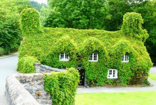 Dachy zielone – miejsce rekreacyjne w centrum miasta